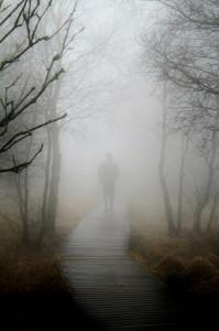 03_fog-267978_1280